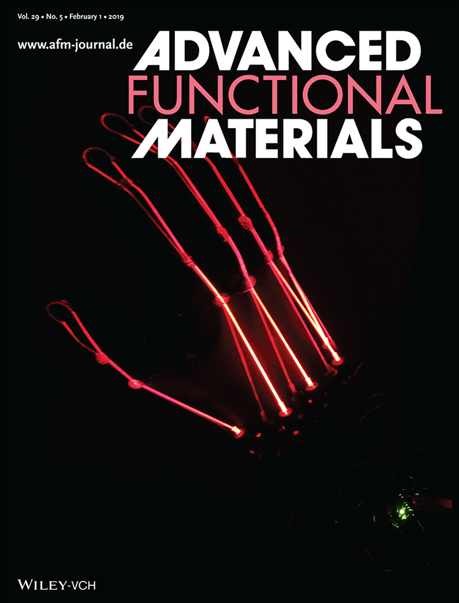 "Towards entry ""Article on Master's thesis of former MAP student published as cover in 'Advanced Functional Materials'"""